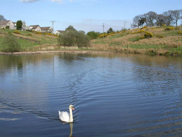 Swan Lake at Banton