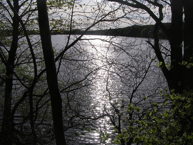 Reflections on Banton Loch