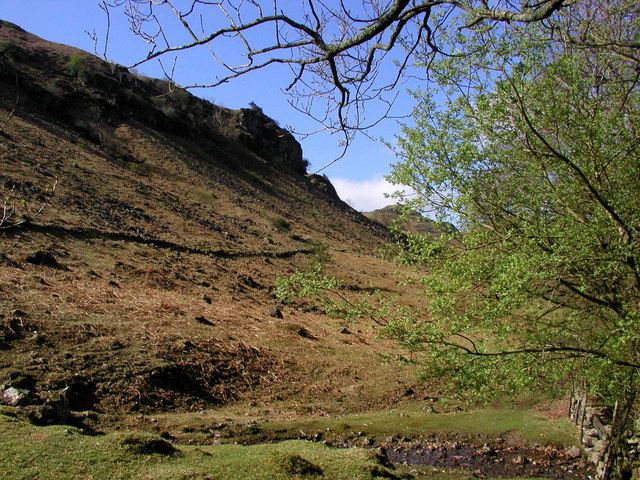 The side of Harter Fell