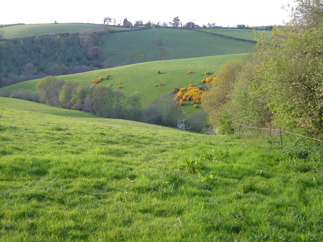 View beside Halsbeer Plantation