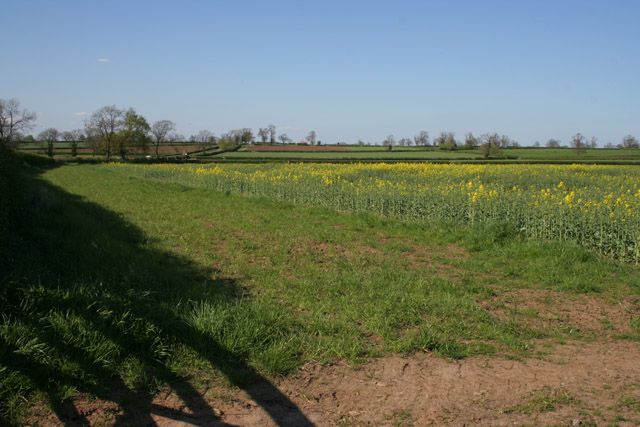 Farmland off Willoughby Lane