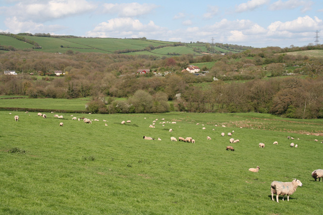 Bampton: towards Hookways Farm