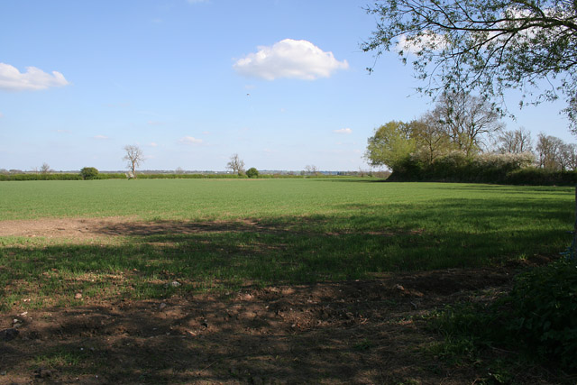 Farmland off Bambury Lane
