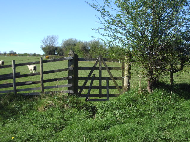 Gate on Settle Road