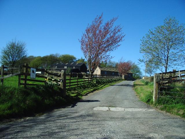 Long Bank Farm