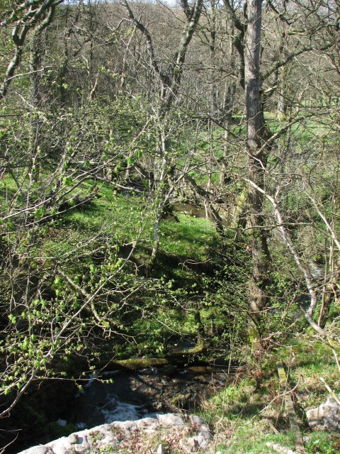 Boquhan tributary