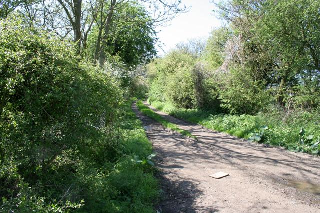 Ratby Meadow Lane, St John's, Enderby