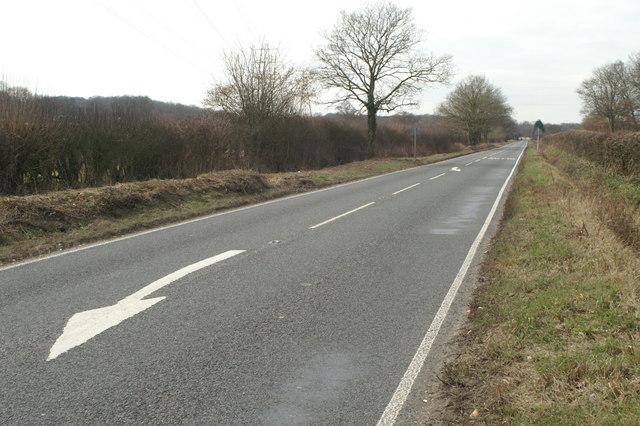 Poles Lane