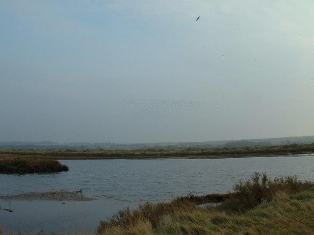 Titchwell RSPB reserve, Norfolk.