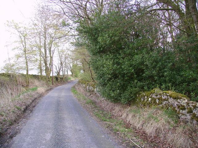 Storth Gill Lane