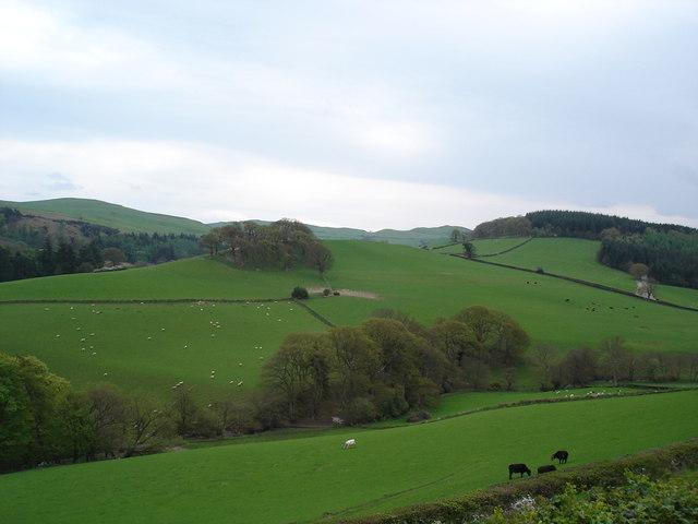 Prion hills