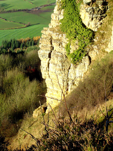 Roulston Scar close up
