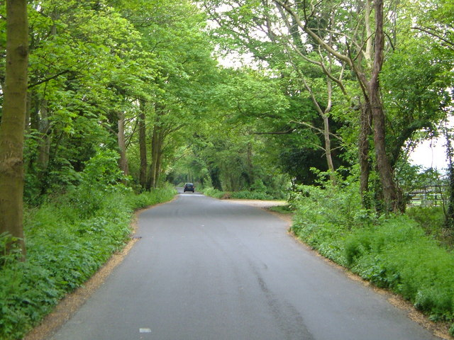Tinpot Lane
