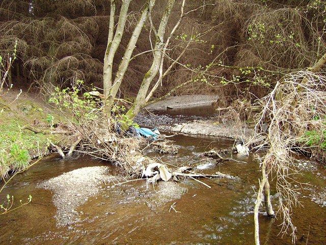 Eddleston Water