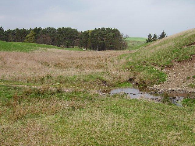 Wetland, Mosshouse
