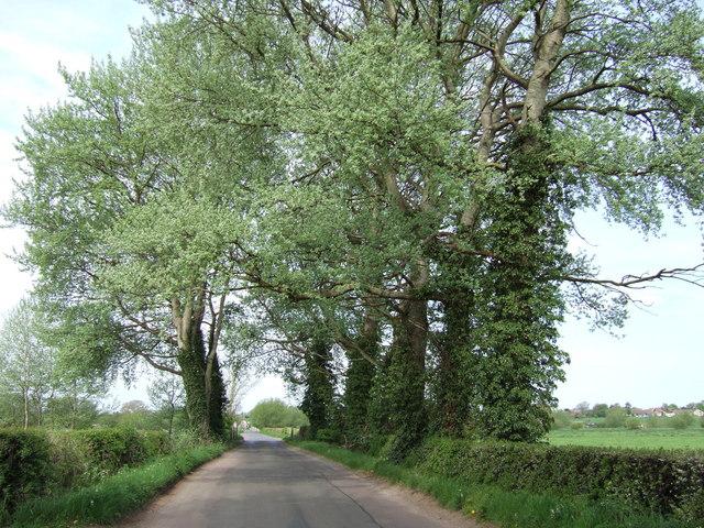 Approaching Shabbington