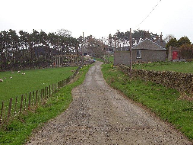 Upper Kidston