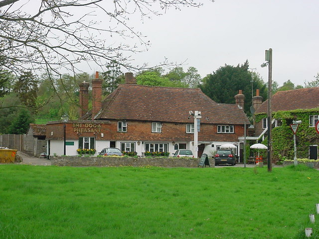 Brook - The Dog and Pheasant Public House