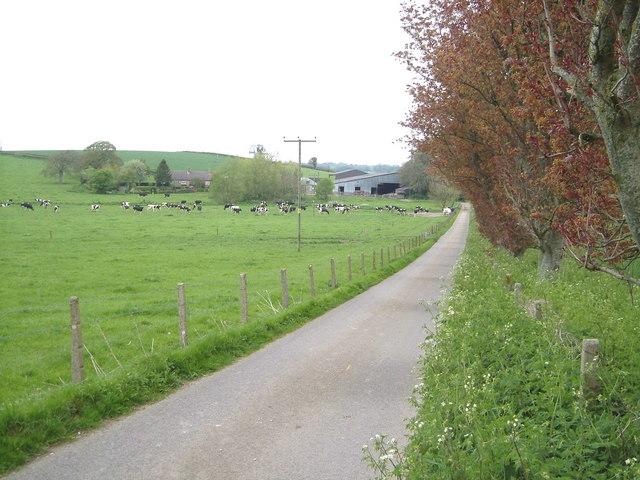 Luton Farm
