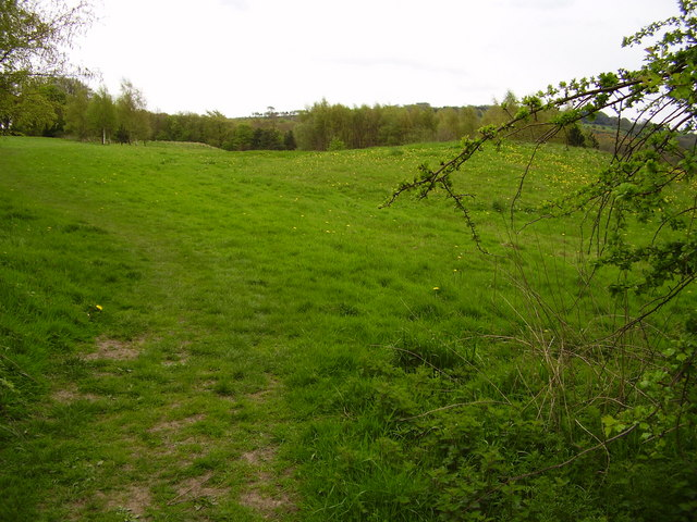 Meadow below the Mellor & Townscliffe Golf Course