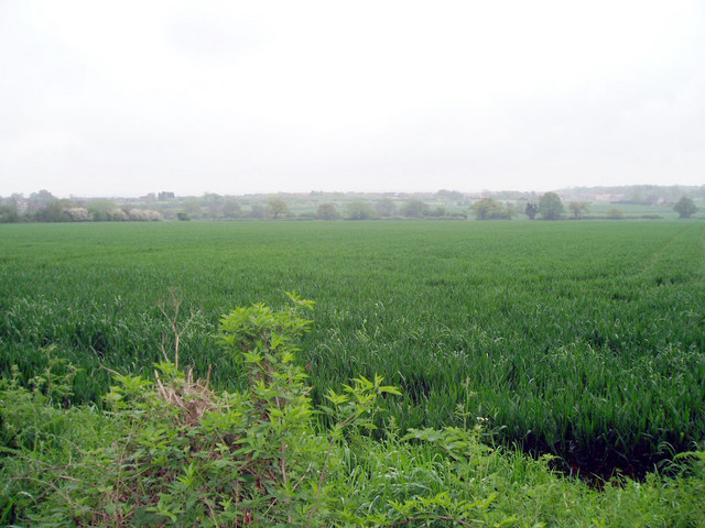Fields south of Loughborough