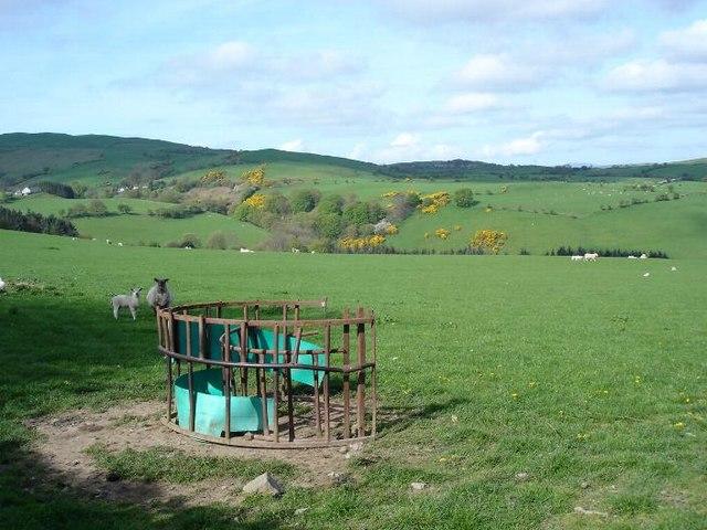 Bethgeth fields