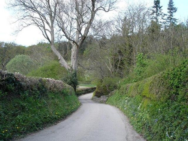 Coed Coch lane