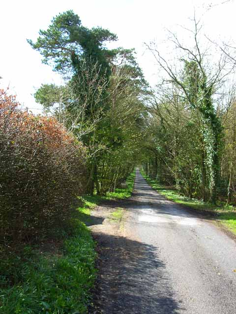 Driveway to Monreith House