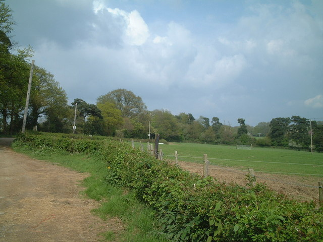Grazing field near West Hoathly