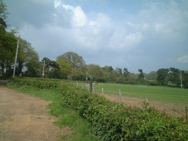 Grazing field near West Hoathly