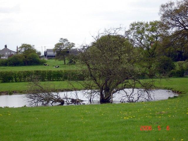 Barrow Lane Farm, Dunham-on-the-Hill