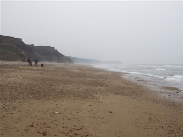 Seaham Beach, looking towards Pincushion Rocks