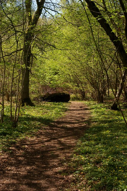 Footpath near Andover Down