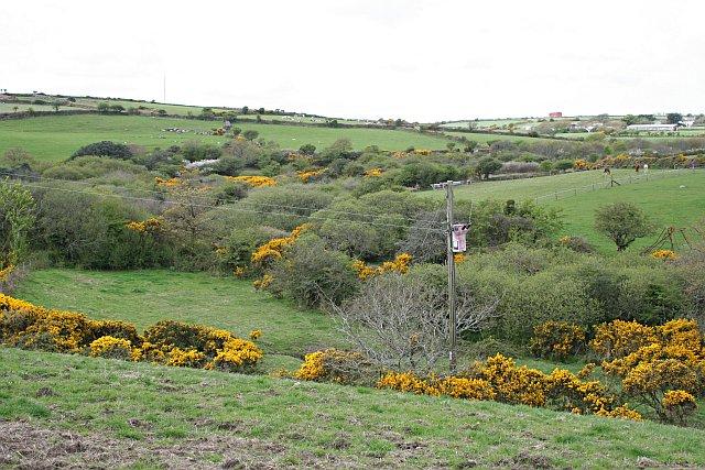 Valley near Treweege