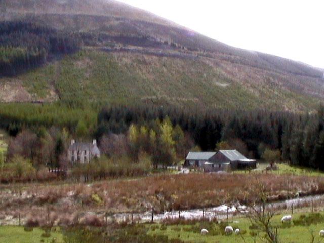 Gywndy-Newydd Farm