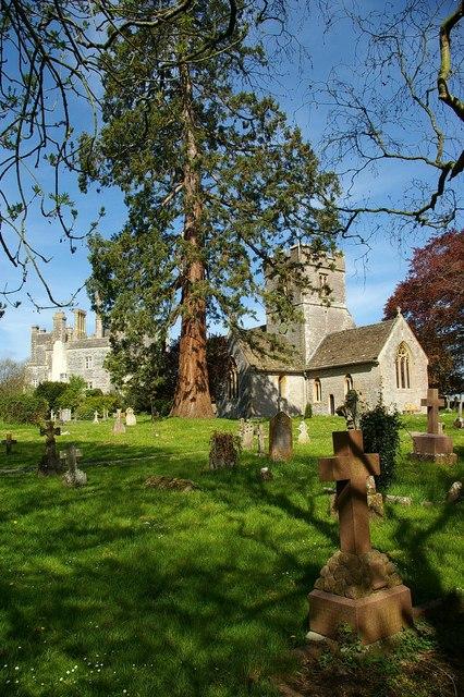 St Leonard�s Church Butleigh.