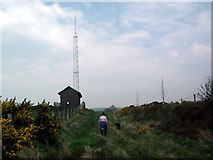 SH8255 : Mast on Pen y Rhiwlas by Steve Ridgway