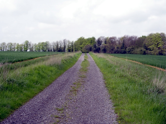 Track, south of Micheldever