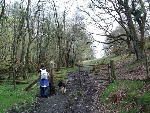 Footpath to Capel Garmon