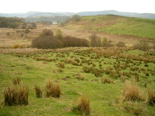 Rough grazing above Barfad