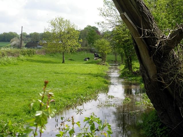 River Dever near Weston Colley