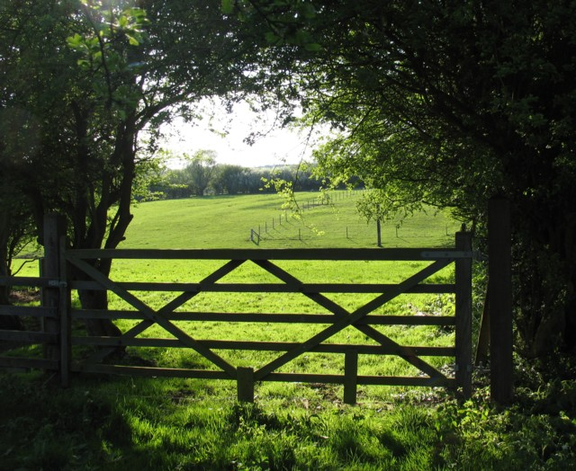 Field and gate