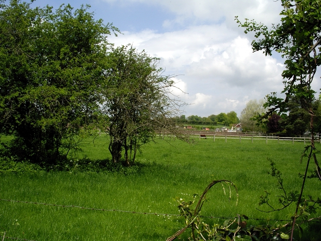 Paddock and field in Northbrook