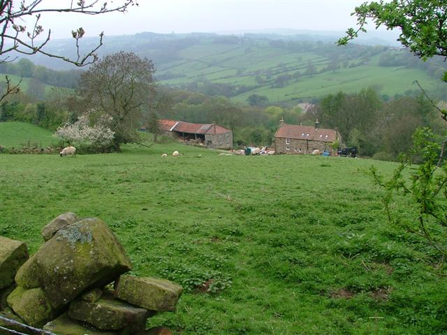View Across the Fields to the Murk Esk Valley