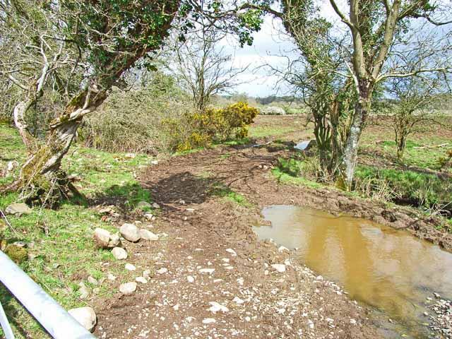 Farm track at Kiladam