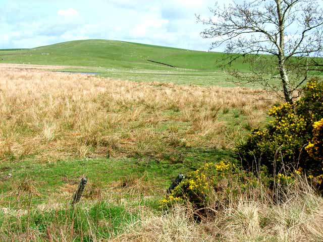 Rough pasture near Gass