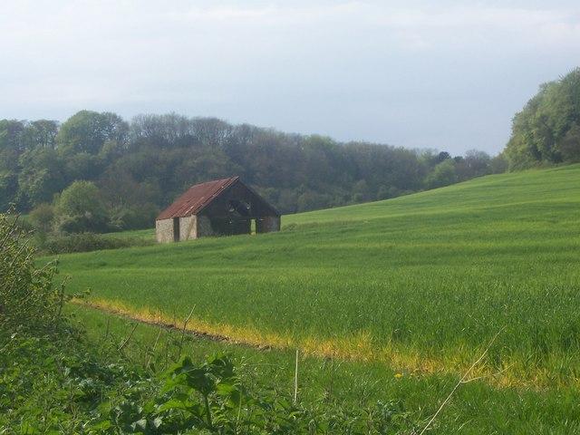 Barn in field outside Hawkley