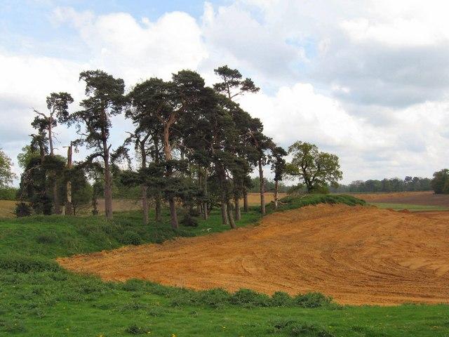 Panshanger Park