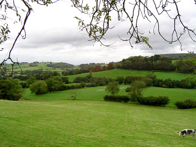 Across the fields to Boltby
