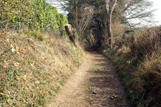Footpath to Fern Hill Copse